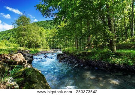 Beautiful Summer Landscape By The Small Forest River. Raging Water Flow Among The Rocks On The Shore