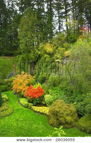 "The tourist with the camera walks in "" Sunken garden "" well-known Butchard garden"