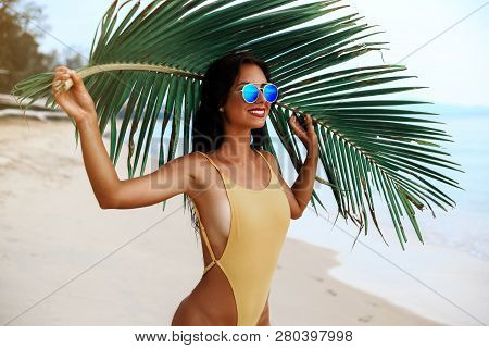 Incredibly Beautiful Sexy Girl Models In A Bikini On The Sea Shore Of A Tropical Island With Palm Le