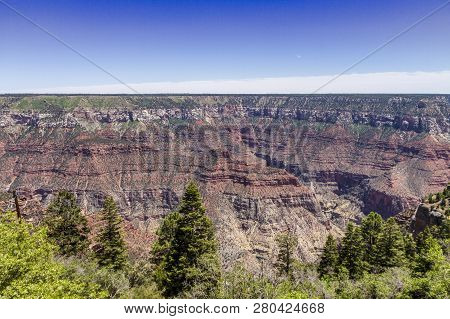 Grand Canyon North Rim Panorama View Usa