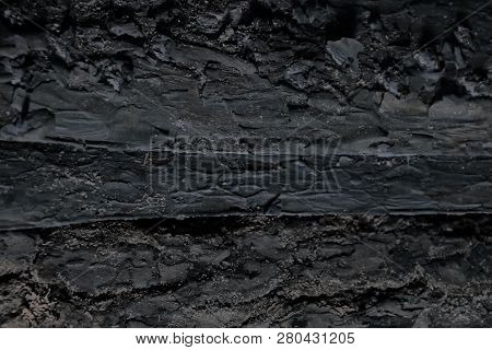 Texture Pine Bark Background. Old Wooden Board, Background. Dirty Wooden. Floor Surface. Detail Wood