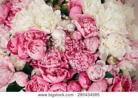 Peonies Wallpaper Pattern. Big Stylish Pink And White Peony Bouquet Close Up. Happy Mothers Day. Val