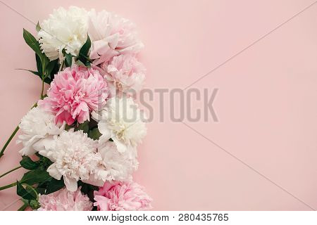 Stylish Peonies Flat Lay. Pink And White Peonies Border On Pastel Pink Paper With Space For Text. Ha