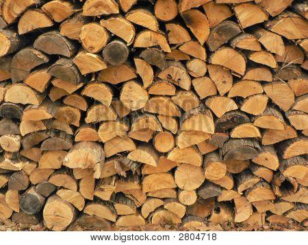 Oak And Pine Wood Pile Logs Trees