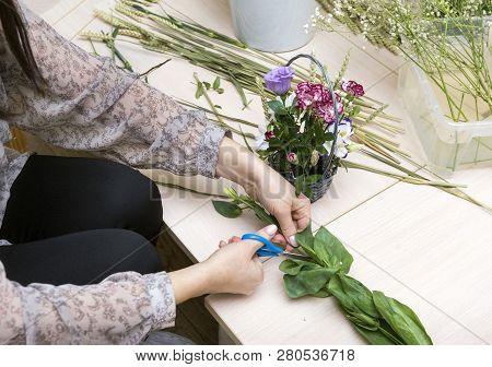 Florist Makes A Bouquet Of Flowers, Florist Cuts Flower With Scissors, Female Hands