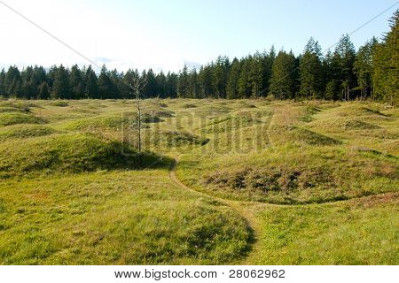 mima mounds, earth formations