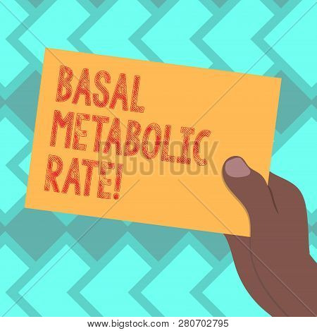 Text sign showing Basal Metabolic Rate. Conceptual photo Minimum energy level require to sustain vital function Drawn Hu analysis Hand Holding Presenting Blank Color Paper Cardboard photo. poster