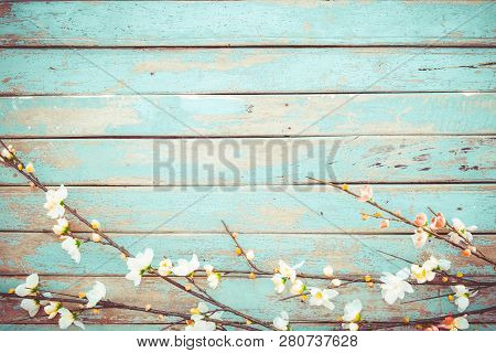 Cherry Blossom Flowers On Vintage Wooden Background, Border Design. Vintage Color Tone - Concept Flo