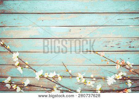Cherry Blossom Flowers On Vintage Wooden Background, Border Design. Vintage Color Tone - Concept Flo