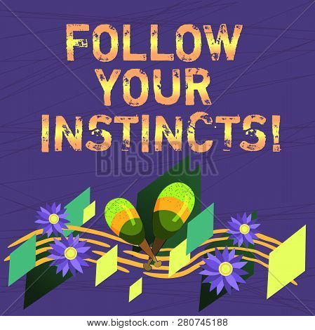 Conceptual hand writing showing Follow Your Instincts. Business photo text listen to your intuition and listen to your heart Colorful Instrument Maracas Flowers and Curved Musical Staff. poster