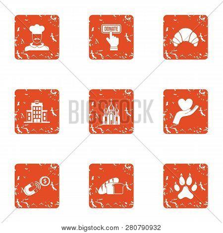 Endowment icons set. Grunge set of 9 endowment icons for web isolated on white background poster
