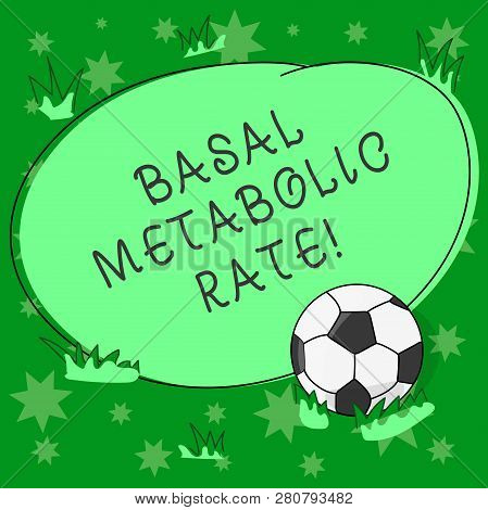 Writing note showing Basal Metabolic Rate. Business photo showcasing Minimum energy level require to sustain vital function Soccer Ball on the Grass and Blank Outlined Round Color Shape photo. poster