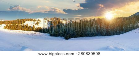 Panorama Of A Beautiful Winter Landscape At Sunset In Evening Light. Spruce Forest On A Snow Covered