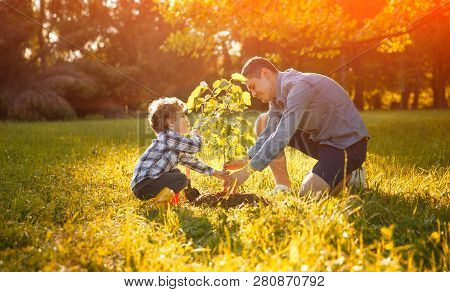 Father And Son In Planting Tree Under Sun With Lens Flare Effect. Family Time Outdoors