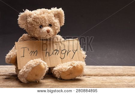 Homeless Hungry Child Concept. Teddy Bear Sad, Holding A Cardboard Sign, Text Hungry