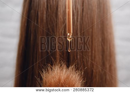 Close-up Drop Oil Restore And Recovery Hair Is Applied To Head Bulbs. Concept Hairdresser Spa Salon.