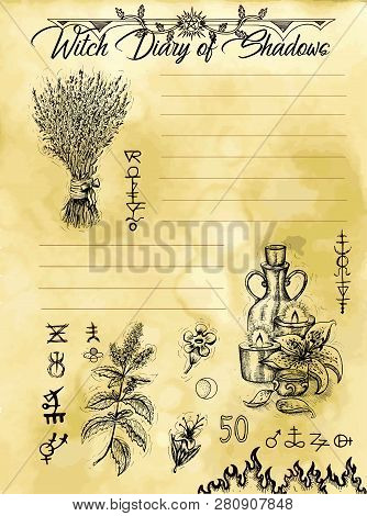 Witch Diary Page 1 Of 31 With Magic Herbs And Potions. Magic Wiccan Old Book With Occult Illustratio