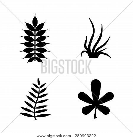 Plants, Leafs, Flora. Simple Related Vector Icons Set For Video, Mobile Apps, Web Sites, Print Proje