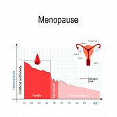 menopause chart. Estrogen level and aging. fluctuation of hormones that occurs during menopause. Menopause as a stage in women's lives when their bodies lose the ability to produce enough hormones that keep the body balanced and healthy. Vector illus poster