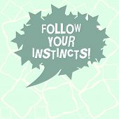 Writing note showing Follow Your Instincts. Business photo showcasing listen to your intuition and listen to your heart Blank Oval Color Speech Bubble with Stars as Outline photo Text Space. poster