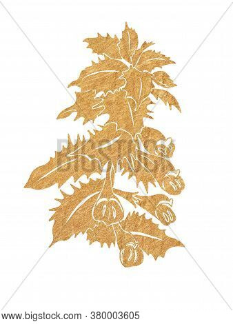 Gold Silhouette Of Forest Flowers With Leaves Isolated On White Background.