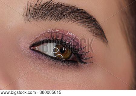 Beautiful Macro Shot Of A Female Eye With Fashion Wet Makeup. Perfectly Shaped Eyebrows, Pink Eyesha