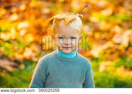Autumn Kids Portrait In Fall Yellow Leaves. Little Child In Yellow Park Outdoor, Yellow Leaves. Yell