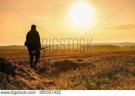 Hunter At Sunset. Hunter Walking In The Autumn Field.
