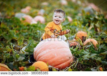 Little Boy Having Fun On A Tour Of A Pumpkin Farm At Autumn. Child Near Giant Pumpkin. Pumpkin Is Tr