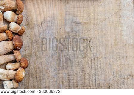 Mushroom Boletus Over Wooden Background. Autumn Cep Mushrooms. Ceps Boletus Edulis Over Wooden Backg