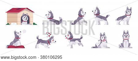 Cartoon Dog. Happy Flat Playful Puppy In Different Poses And Doing Tricks, Cute Comic Pet With Emoti