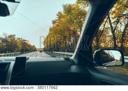 Autumn Car Travel Concept Trees With Yellow Leaves