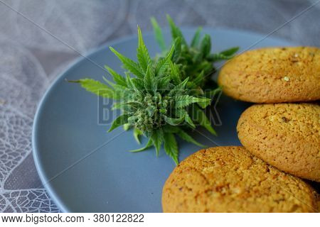 Cookies With Cannabis And Buds Of Marijuana On The Plate. Can Of Cannabis Buds Cbd. Medical Legal Ma