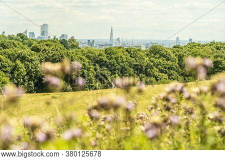 June 2020. London. Hampstead Heath Londonengland Uk Europe