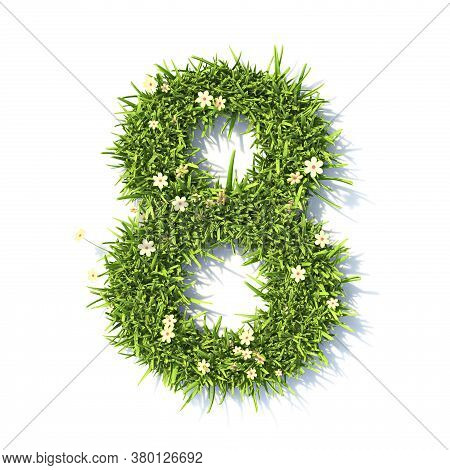 Grass Font Number 8 Eight 3d Rendering Illustration Isolated On White Background