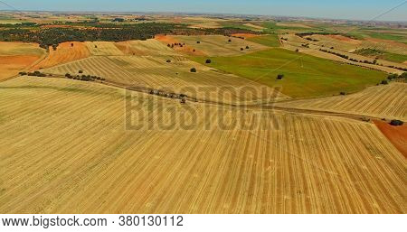 View from air on farming lanscape. Orange and green crops field.