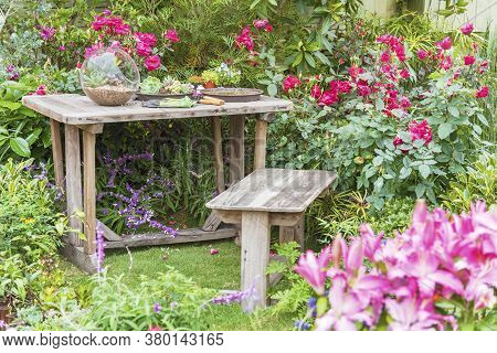 Gardening Tools On Table And Spring Flower On The Terrace In Garden