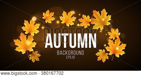 Autumn Abstract Banner Of Orange Maple Leaves. Fall Festive Template For Your Design. Abstract Golde