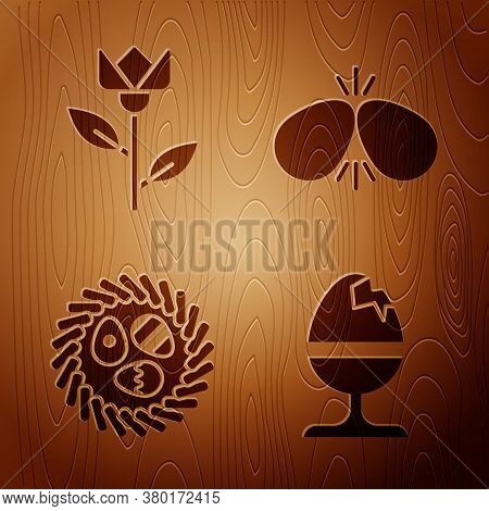 Set Chicken Egg On A Stand, Flower Tulip, Easter Egg In A Wicker Nest And Easter Eggs On Wooden Back