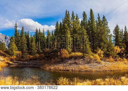 The valley of Kananaskis mountain park. Bright autumn day in Indian summer. Shallow lake with yellow autumn leaves. The Canadian Rockies. The concept of active, ecological and photo tourism