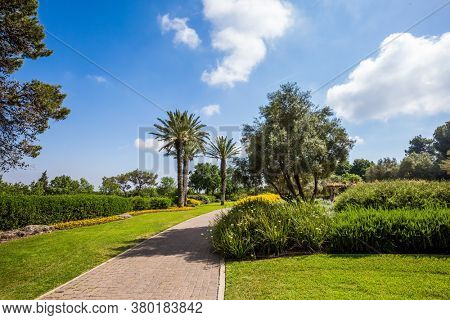 The magnificent botanical park on the slopes of Mount Carmel. Israel. Warm sunny day. Stone paved scenic walkway. Great walk in a clean well-kept park