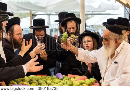 JERUSALEM, ISRAEL - SEPTEMBER 20, 2018: The holiday bazaar in Jerusalem on the eve of Sukkot. Religious young Jews choose etrog - the fruit of  magnificent tree. The concept of photo tourism