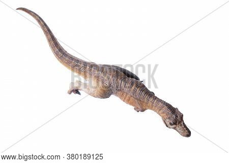 Top View Tyrannosaurus Rex Dinosaurs Toy Brown Isolated On White Background. Closeup Dinosaur And Mo