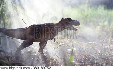 Tyrannosaurus Rex Dinosaurs Toy Stands In A Fog-covered Forest On Nature Background. Closeup Dinosau