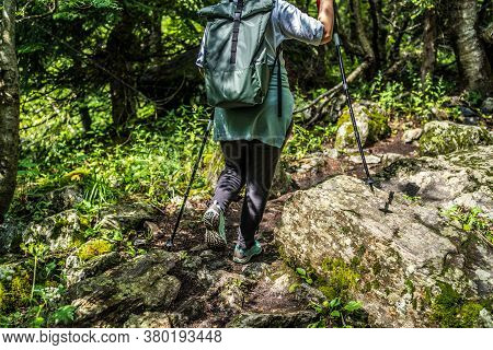 Group Of People Go Hiking In Wooded And Hilly Area. Rear View Of Woman Engaged In Nordic Walking On