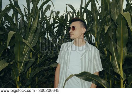 Photo Of A Guy In Fashionable Sunglasses. A Man In A Corn Field With Leaves. Evening Photo With Flas