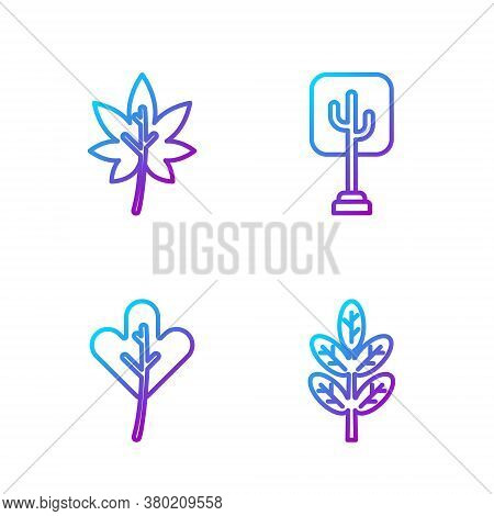 Set Line Leaf Or Leaves, Leaf Or Leaves, Leaf Or Leaves And Tree. Gradient Color Icons. Vector