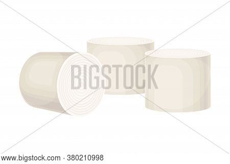Rolls Of Paper As Manufactured Product Vector Illustration