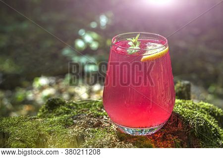 Watermelon Alcoholic Drink Sangria Or Cruchon. Pink Cocktail Drink In Glass Outdors On Wood With Mos
