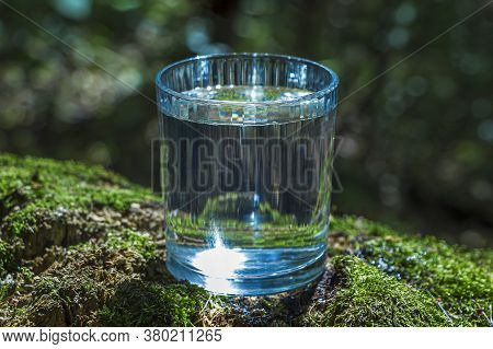 Glass Of Clean Still Water On Tree Stump With Moss Against Green Natural Background. Spring Ecologic